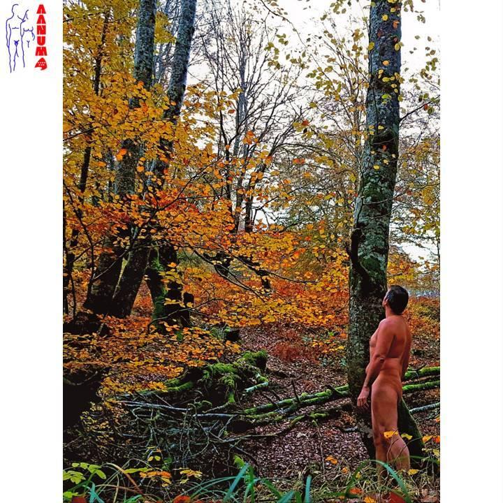 """""""El hombre forma parte de la Naturaleza..."""" (El Caminante)"""